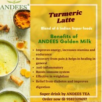 Turmeric Latte (Haldi Doodh) / 20 Ready to drink Golden Shots / Immunity & Energy Booster, Body Strengthening, Endurance / 20 X 9 gm